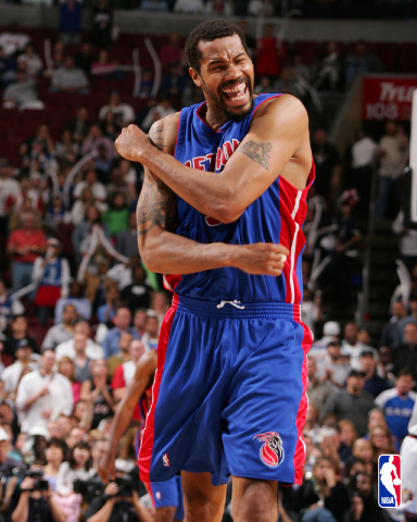 Rasheed Wallace NBA Stars